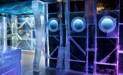 Aquatic 2009