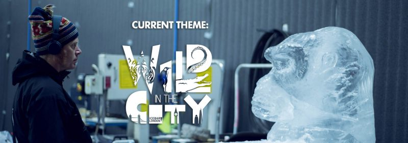 Wild in the City is the current theme at Icebar London