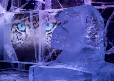 Icebar 2016 Design, Wild In The City - Gorilla. Photograph by Peter Kindersley
