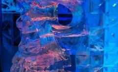 ICEBAR Rocks